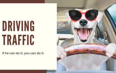 5 quick, yet effective, things you can do right now to drive traffic to your website