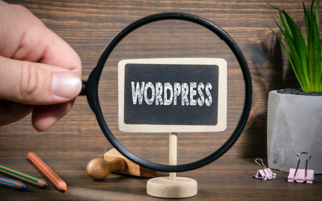 Why should I use WordPress for my Business Website?